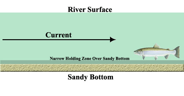 Sandy Bottom
